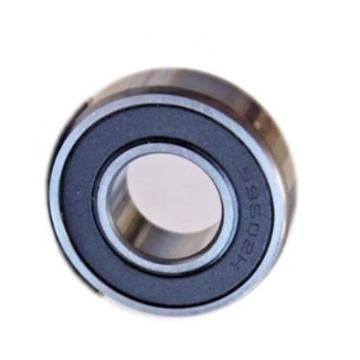 Zys Wholesale Distributor of Spare Parts OEM Bearing Deep Groove Ball Bearing 6304-Zz